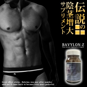 バビロンZ (BAVYLON Z)