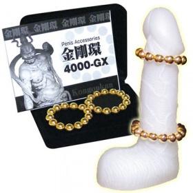 金剛環4000-GX