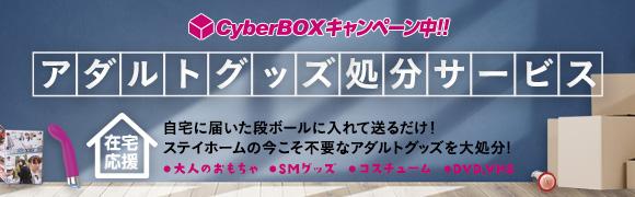 アダルトグッズ処分サービス サイバーボックス